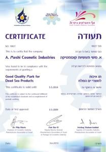 certificate-2013